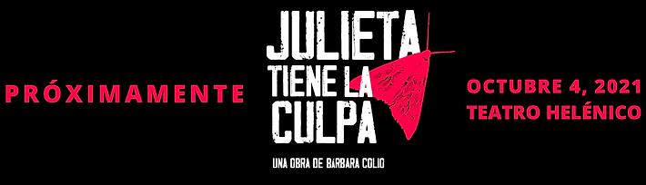 JULETA TIENE LA CULPA de Bárbara Colio
