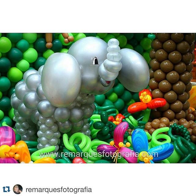 E esse elefante?😍 que fofura é Essa??😍😁 #Repost @remarquesfotografia with @repostapp. ・・・ E hoje