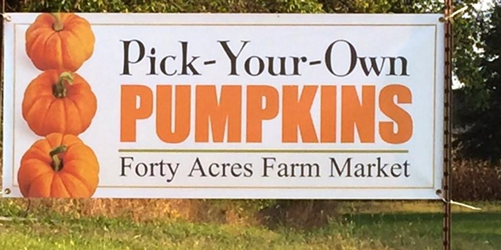 Forty Acres Farm Market Pick Your Own Pumpkin Festival