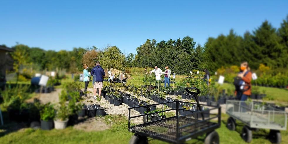 Native Plant-a-Palooza: Perennials, Shrubs and Trees Fall Sale!