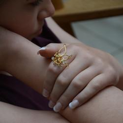 LauraBangert_ScaleArray_ring.jpg