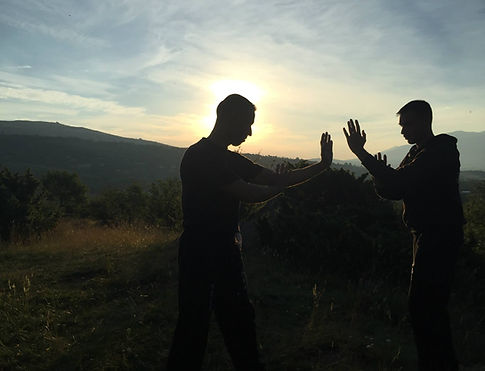 wing chun toulouse
