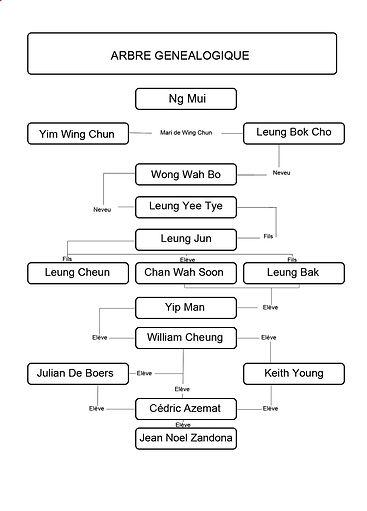 Wing Chun ToulouseYip Man