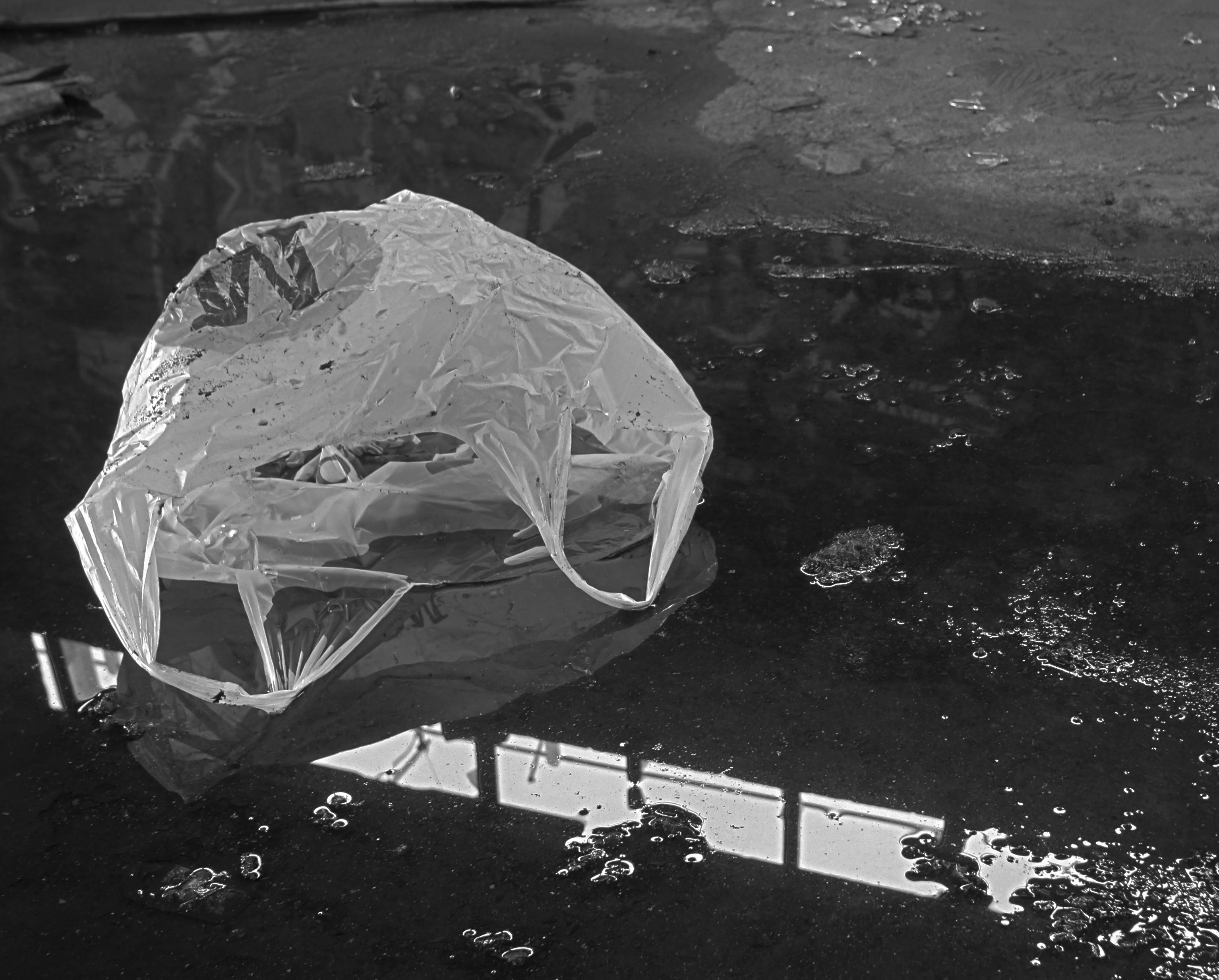 bagwater