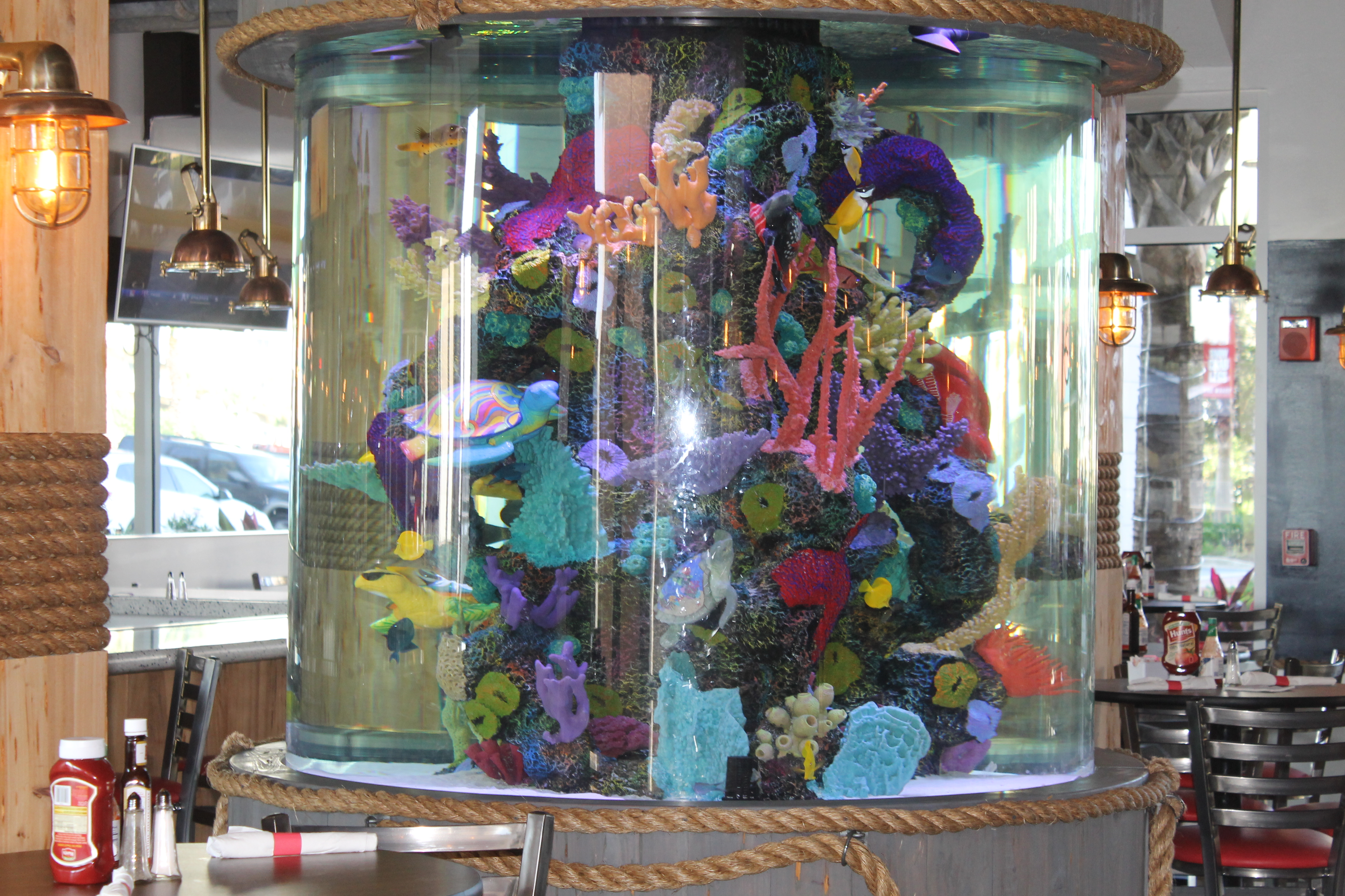 Fish Tank from Tanked TV Show