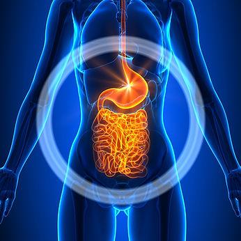Natural Medicine for Digestive Health