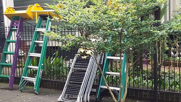 parade ladders.jpg