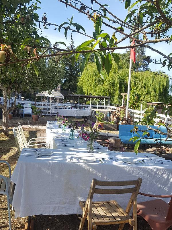 Sonoma Leland St Farm table.jpg