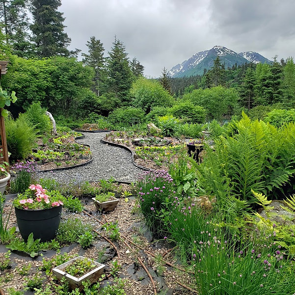 Stillpoint garden.jpg