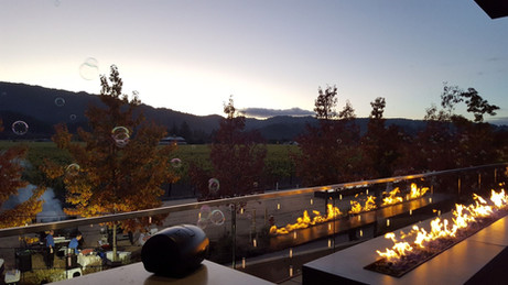 View from Napa's Hall Wines