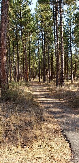 Union Creek Campground_trail.jpg