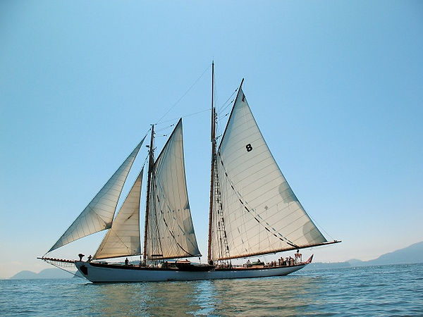 Schooner Zodiac lightened resized.jpg