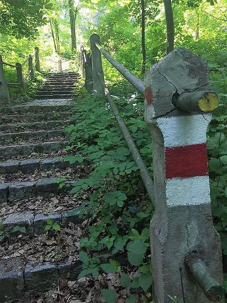 Weinervald Wanderway stairway on way to