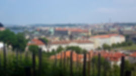 Prague city view from castle.jpg