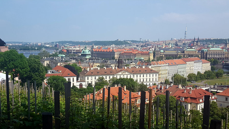 Prague city view from castle.jpg