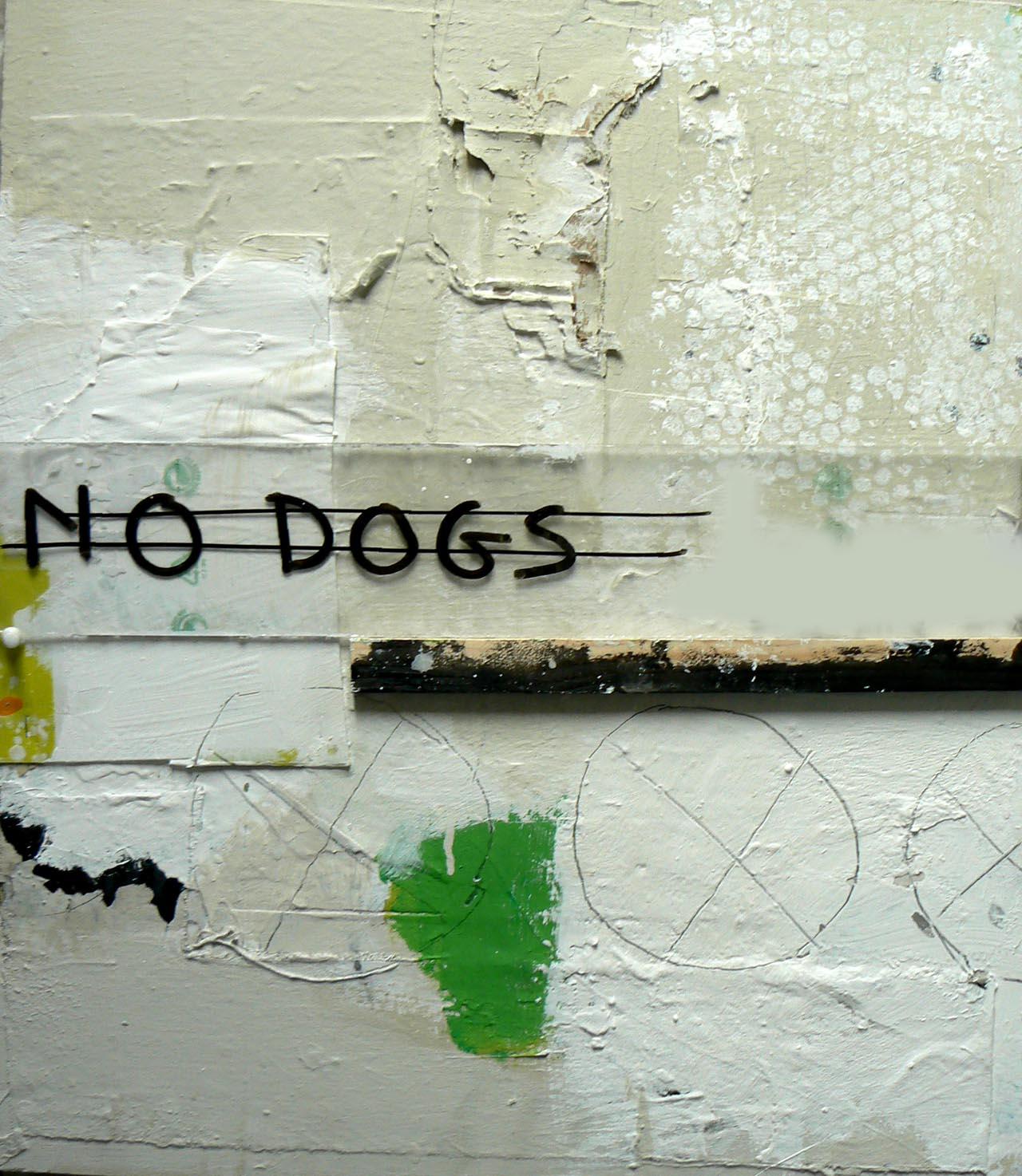 nodogs56