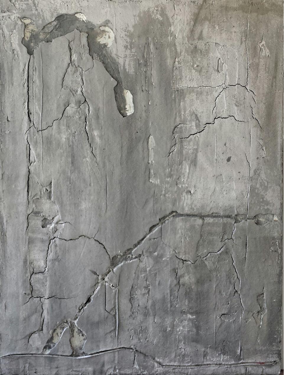 P FAVA  Trash wall 'Damas'