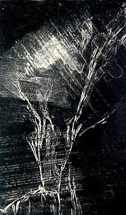 Pierre VALLAURI série' arbre stencil'