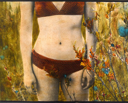 the swimsuit 40x50cm - copie