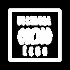 logoFestivalEcho4.png