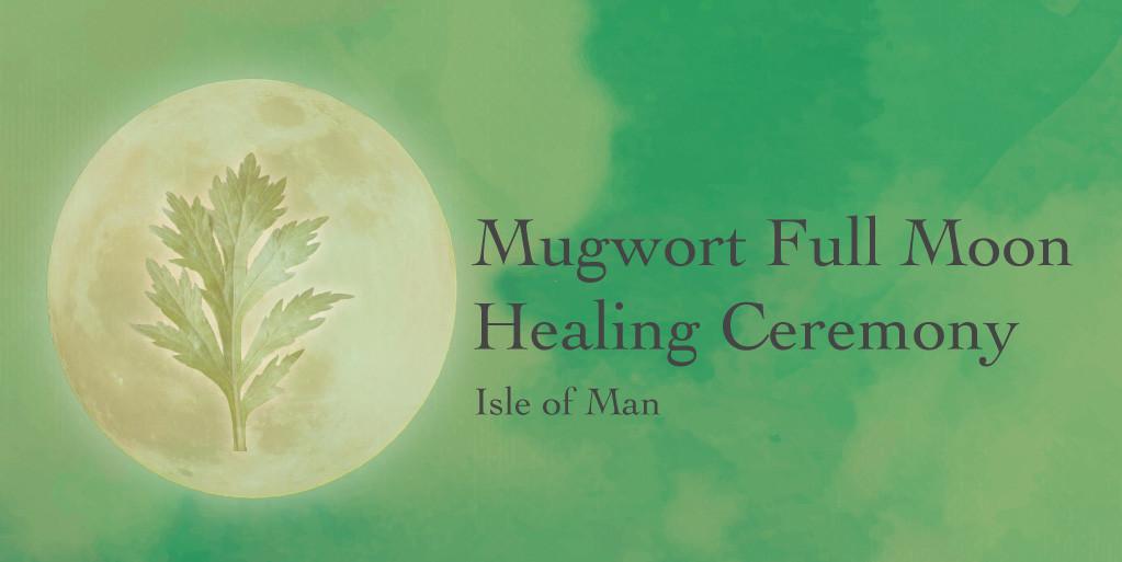 MUGWORT | Plant Consciousness