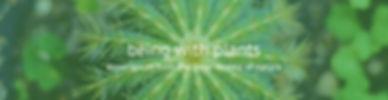 BLOG-Website-Header4.jpg