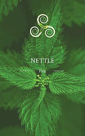 Plant-box-NETTLE.jpg