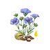 LINSEED OIL.png