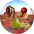 DESERT FRUITS CIRCLE.png