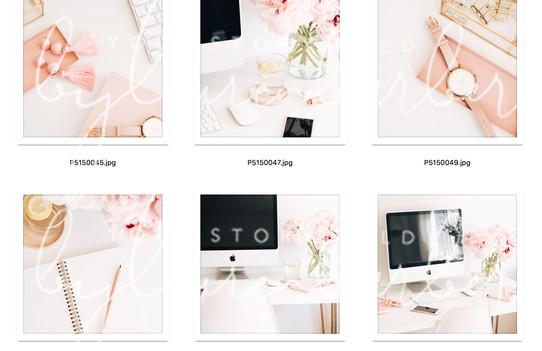 blush-study-collection-02.jpg