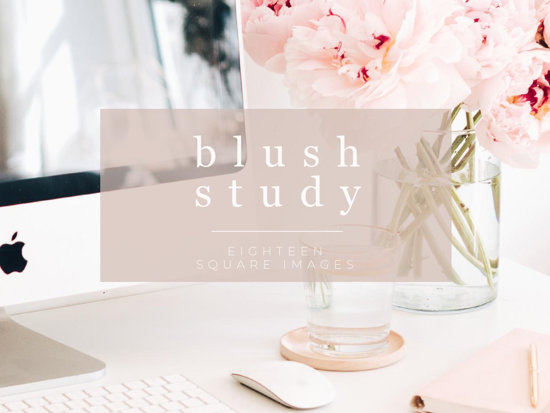 Blush Study stock photography