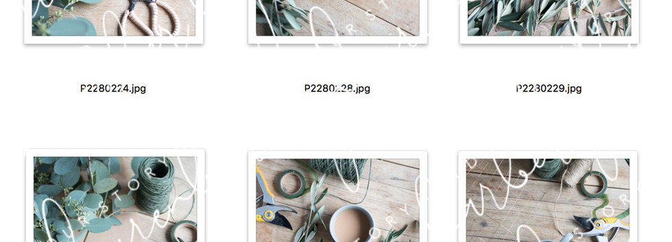 Photo Bundle image 1.jpg