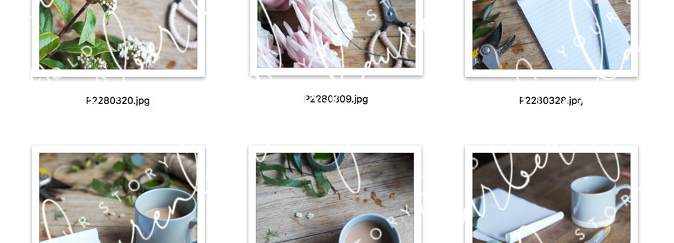 Photo Bundle image 3.jpg