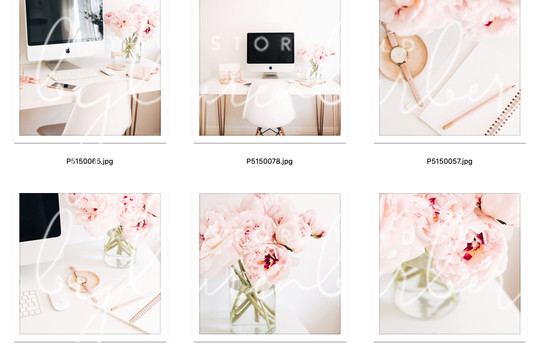 blush-study-collection-03.jpg
