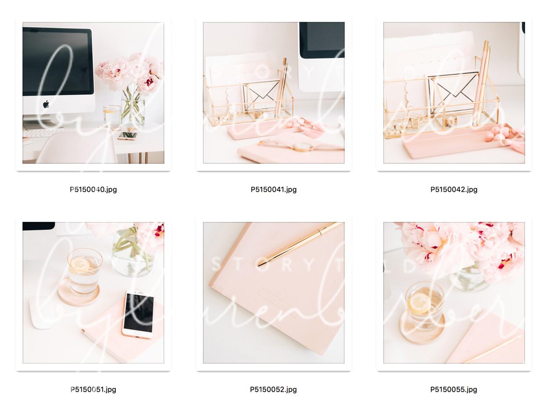 blush-study-collection-01.jpg