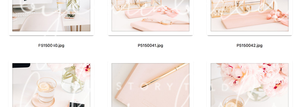 blush-study-collection-01.jpg