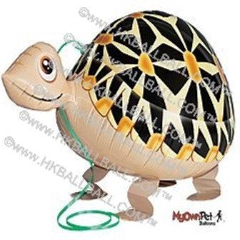 龜龜 Turtle
