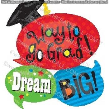 畢業DREAM