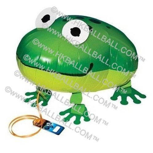 青蛙 Frog