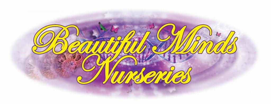 Beautiful Minds Nursery