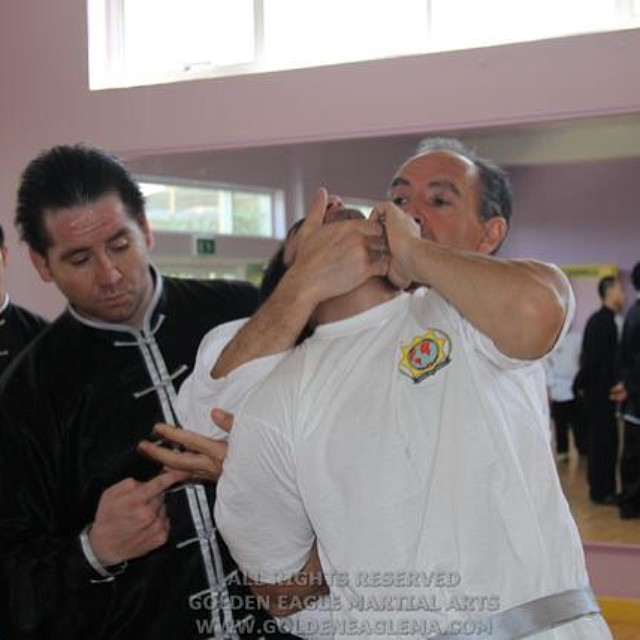 International Police Association Seminar with Master Manuel Benitez, Master John Duval and Master Fr