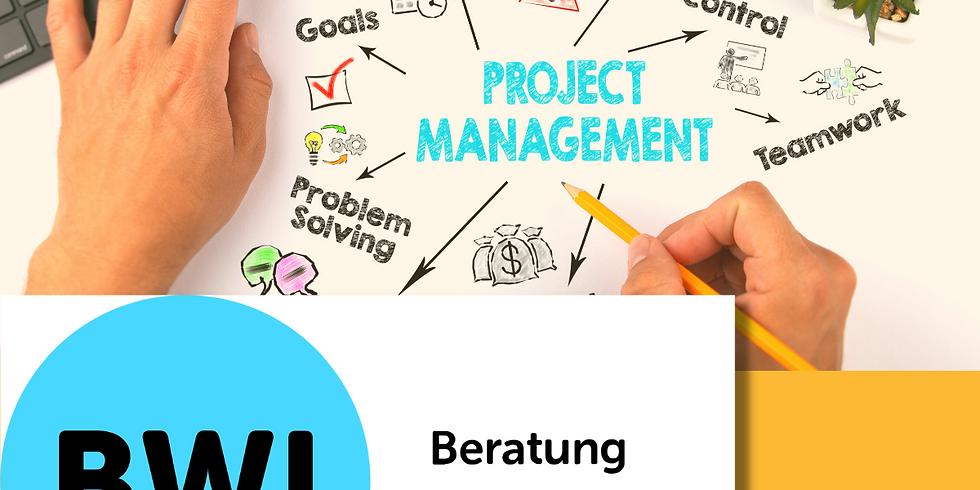 Projektmanagement – Methodik und Instrumente
