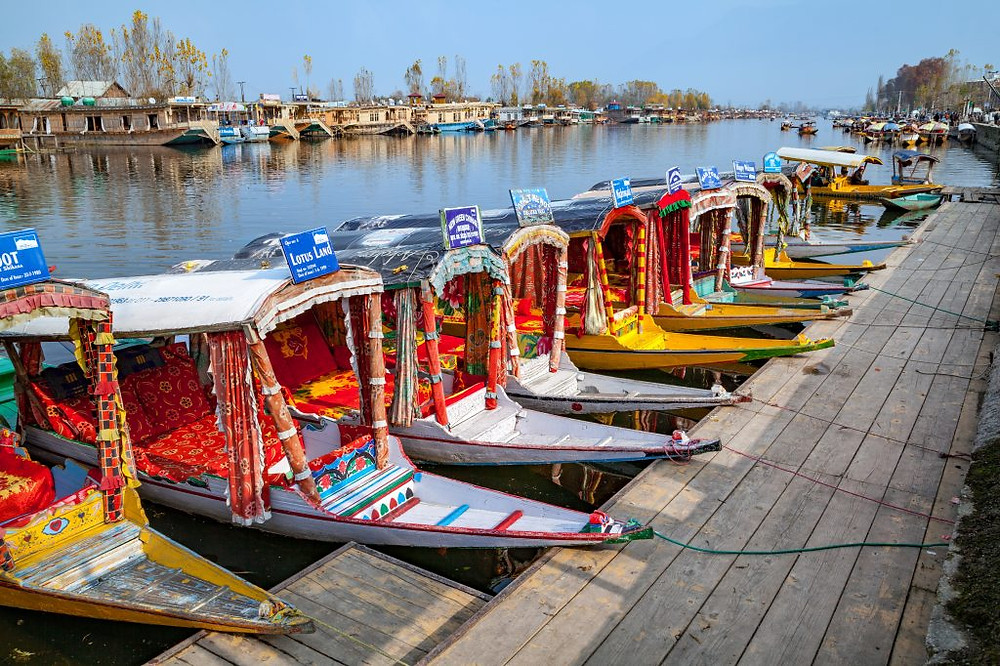 Shikaras of Dal Lake | Things to do in Srinagar, Kashmir