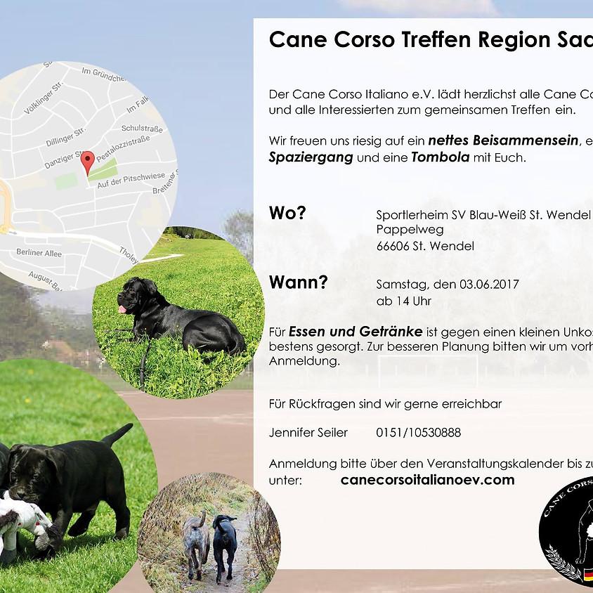 Cane Corso Treffen