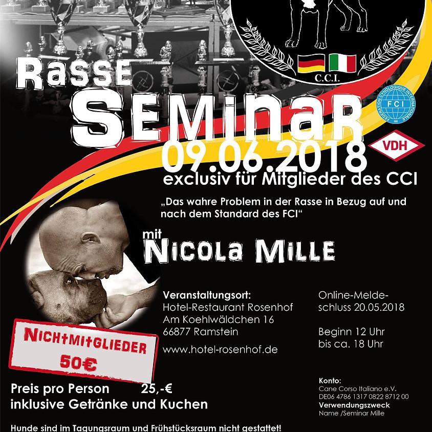 Seminar von Nicola Mille