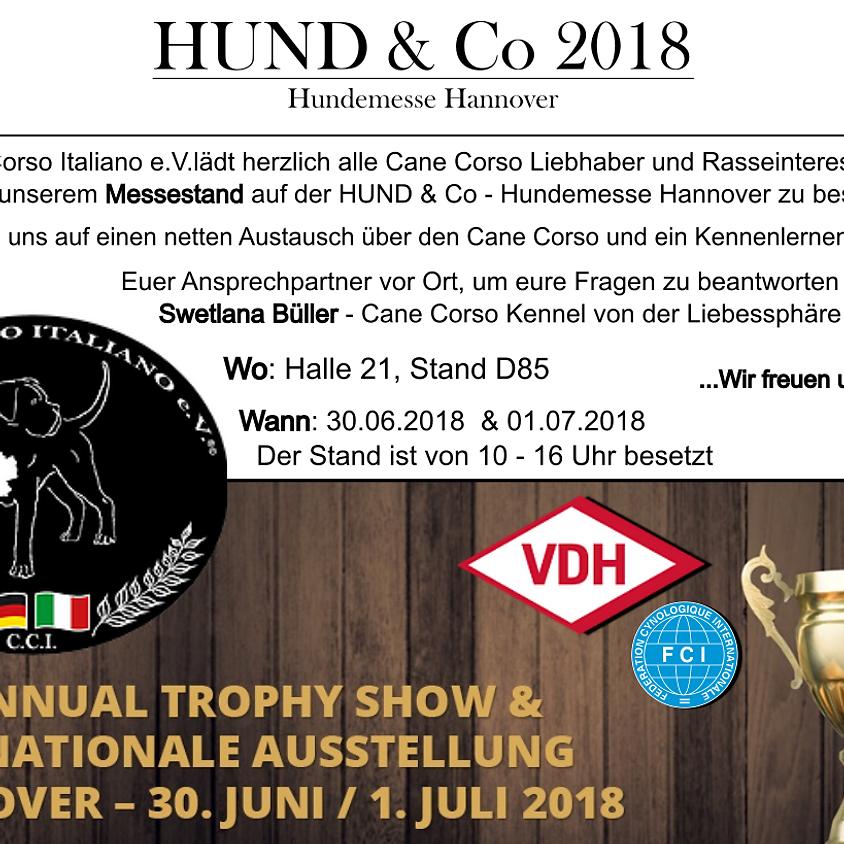 Hund & Co. Hannover (1)