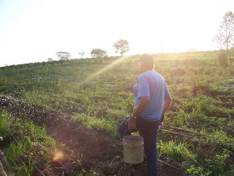 28 de julho comemoramos o dia do agricultor!