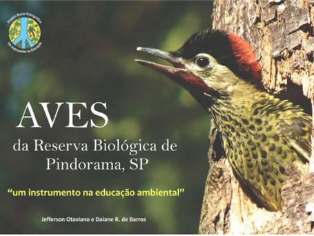 Aves da Reserva Biológica de Pindorama - SP
