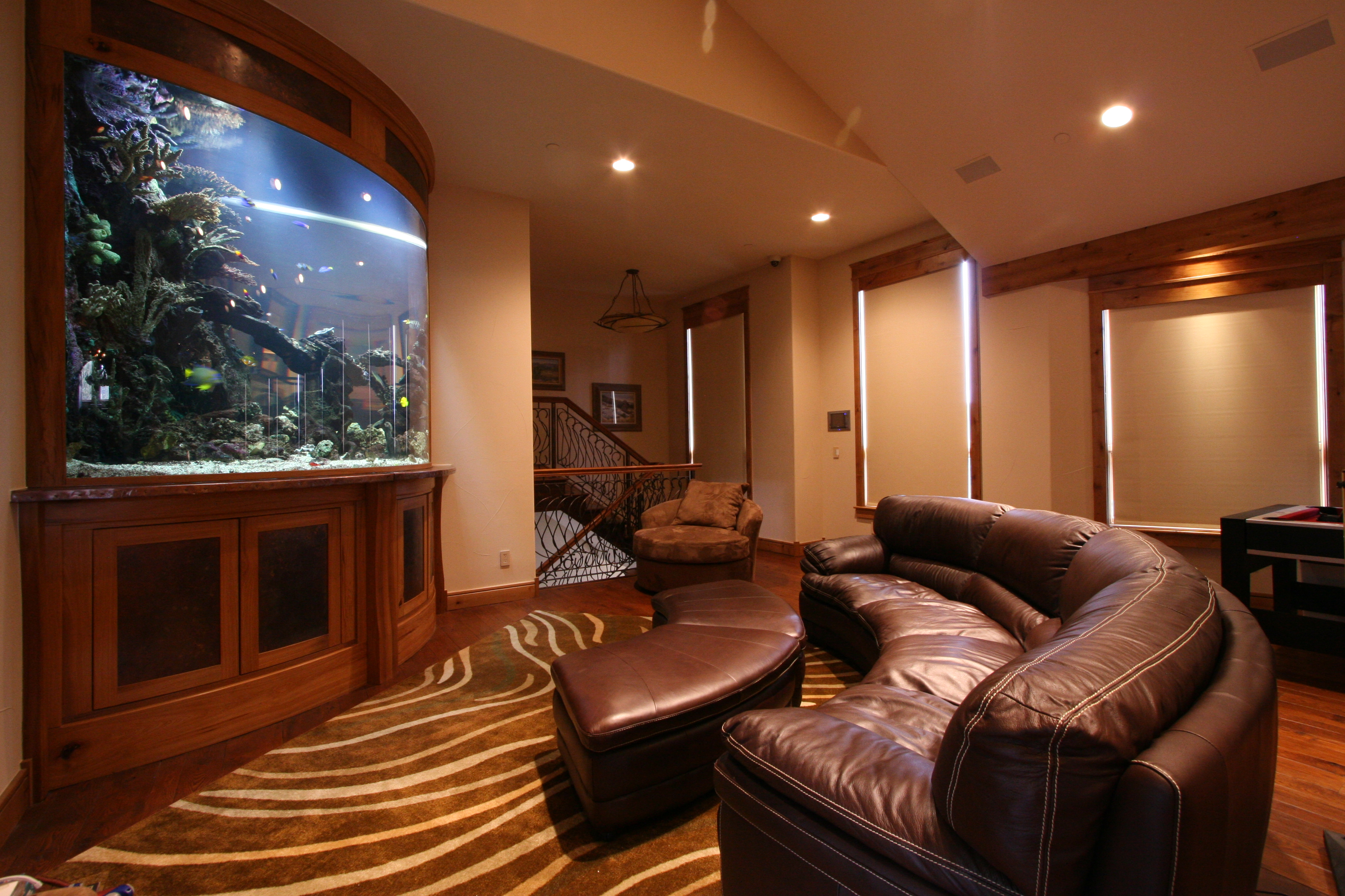 Custom Aquarium