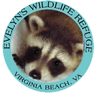 Copy of Evelyn's Wildlife Refuge.png